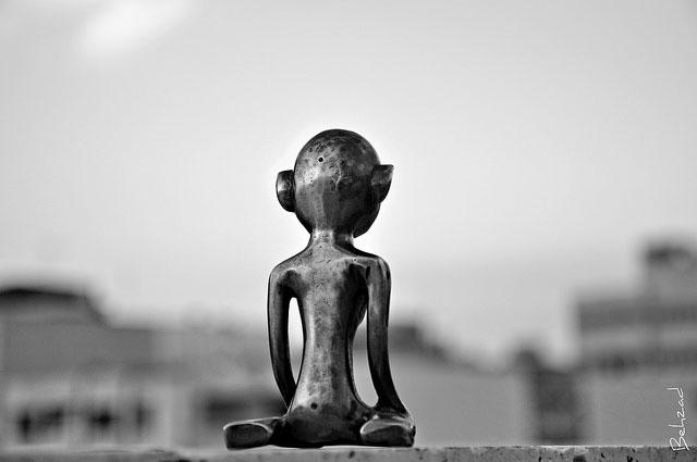 Image by Behzad No